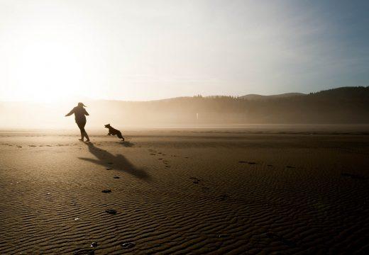 Préserver sa santé grâce à un animal de compagnie