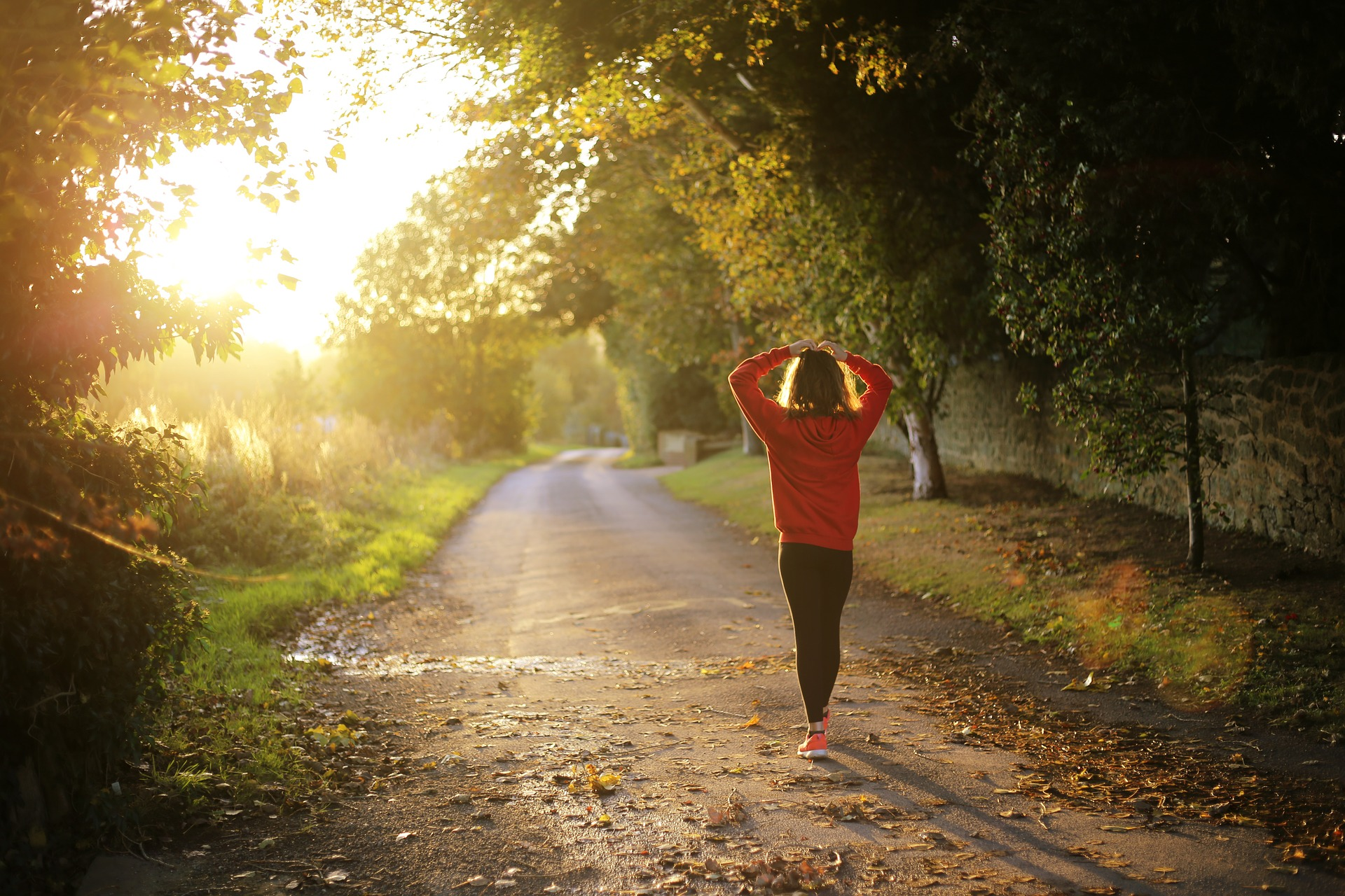 Femme vue de dos qui marche dans la nature au lever du soleil